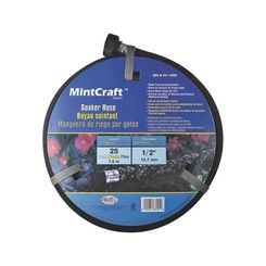 Mintcraft P174-161101