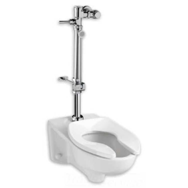 American Standard 6047.821.002 American Standard 6047.821.002 Exposed Toilet Flush Valve, Chrome