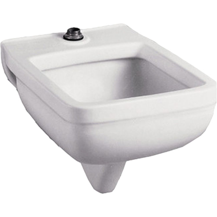 Service Sink : ... Sinks American Standard 9512.999.020 Wall-Mount Clinic Service Sink